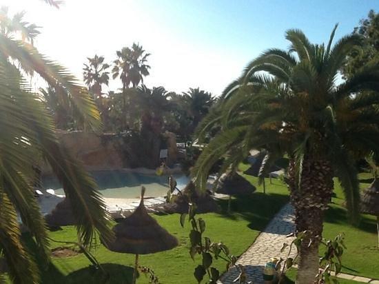 SENTIDO Phenicia : our view