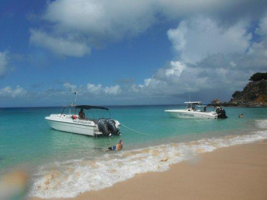 Captain Alan's Three Island Snorkeling Adventure : Beach stop