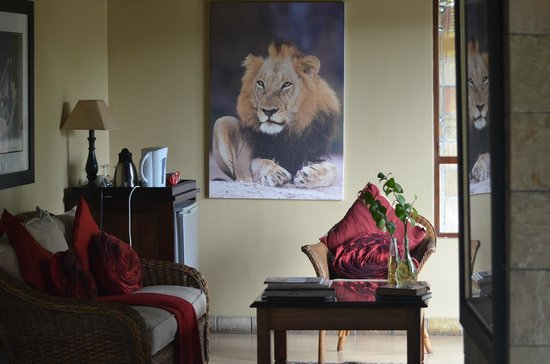 Elephant Plains Game Lodge : Suite Lion