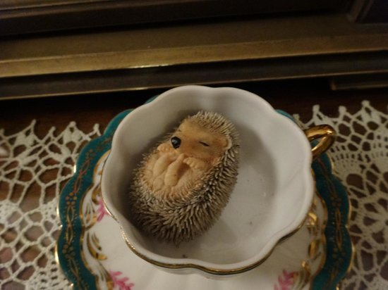 Quill Haven Country Inn: Baby Hedgehog :)  There are lots of ornaments and decorations in every corner of every room