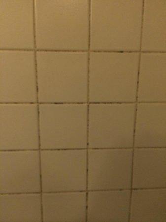 Disney's Hotel New York : mur SDB