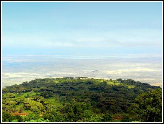 Ngorongoro Sopa Lodge: SOPO NGORONGORO - Looking down on the crater