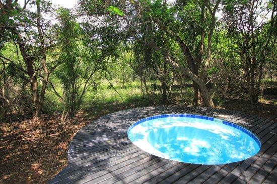 Jacana Lodge : Plunge Pool at small 2 sleeper lodge - chalet 1