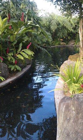 Hotel El Silencio del Campo: Another view of main hot spring