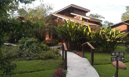 Hotel El Silencio del Campo: Path to cabin