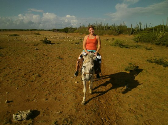 Horse Ranch Bonaire: Gorgeous day to go horseback riding.