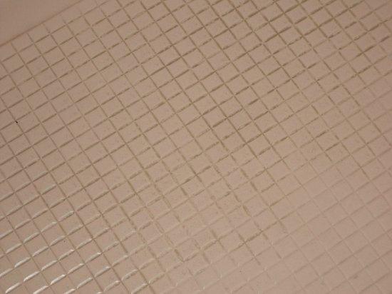 Royal Seabank Hotel: shower tray room 304