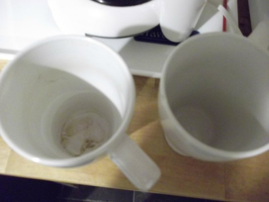 Magnuson Hotel Clearwater Central : Dirty and Chipped mugs