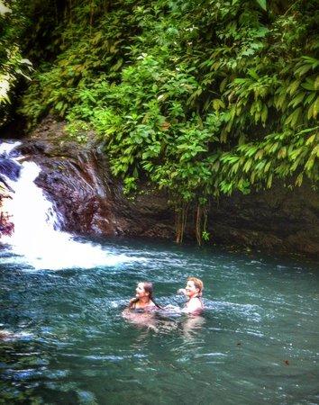 Discovery Horseback Tours: Swim Play