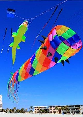 Bilmar Beach Cafe: kites in the blue sky over Bazzie's