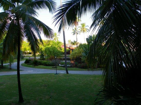 Caribe Club Princess Beach Resort & Spa: Vue sur le parc de notre chambre