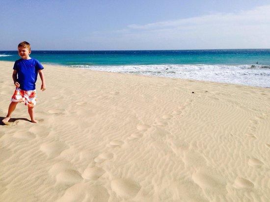 TUI MAGIC LIFE Fuerteventura: Cracking beach.
