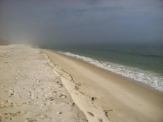Navy Lodge Pensacola: Beautiful white sand beach.