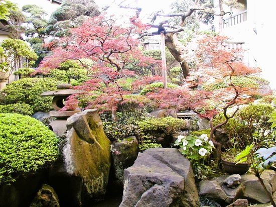 Wakaba Ryokan: 先代が手がけた中庭。優しい木漏れ日が差し込む。