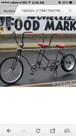 Zippy's Bikes: Custom Bikes