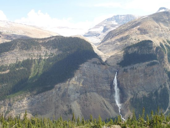 A breathtaking view of the glacier and Takakkaw Falls!