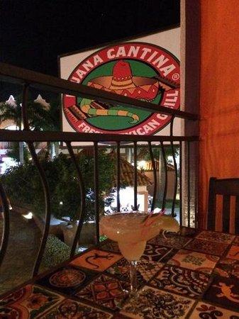 Iguana Cantina: patron margarita