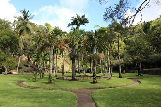 Zoo de Martinique - Habitation Latouche : jardin du carbet
