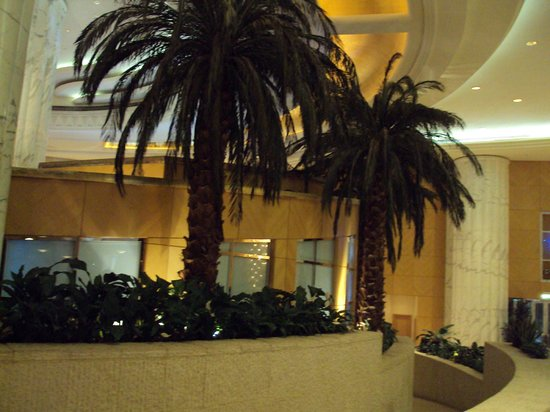 Grand Hyatt Dubai: plam trees inside hotel