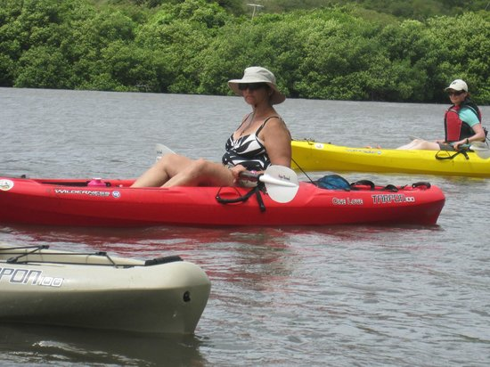Conservation Kayak: Mangrove Adventure