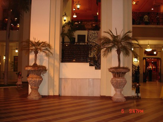 Hotel Riu Vallarta: lots of plants displayed