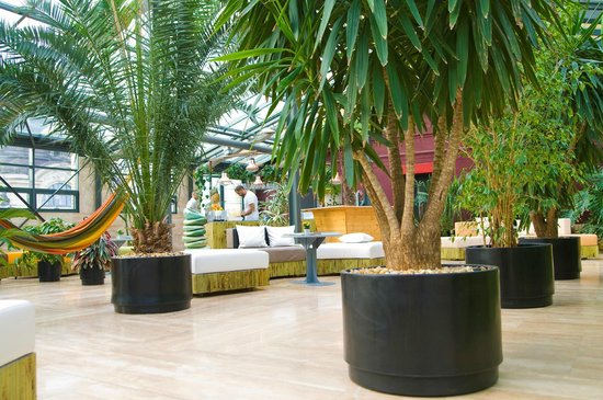 Szechenyi Palmahaz (Szechenyi Palm House)