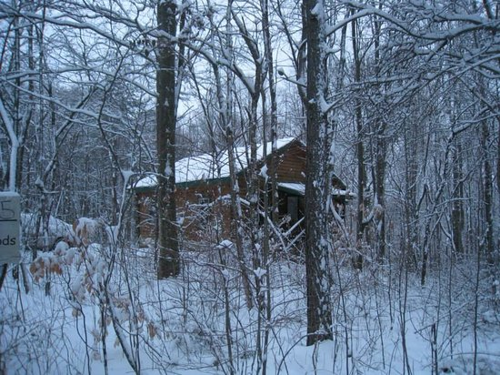 Getaway Cabins: Little snowy cabin in the woods