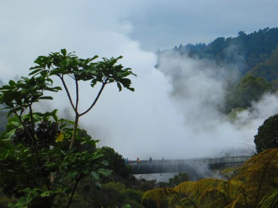 Te Puia: Approaching the geysers