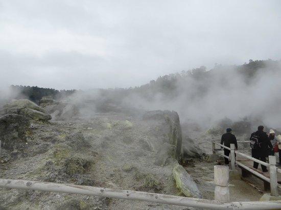 Te Puia: Seeing the natural geysers