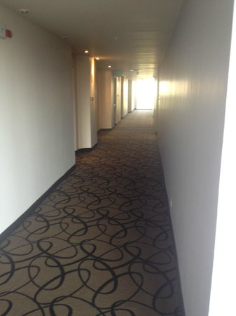 Novotel Panamá City: pasillo