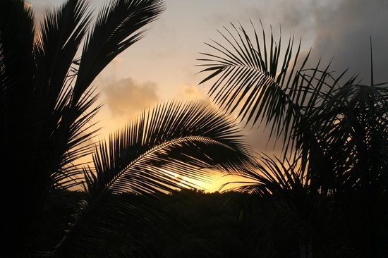 Paradisus Palma Real Golf & Spa Resort : Sunset
