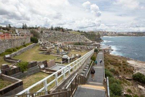 Harbourside Apartments : Waverley Cemetery