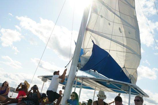 Albatros: Boa parte do passeio é feita a vela