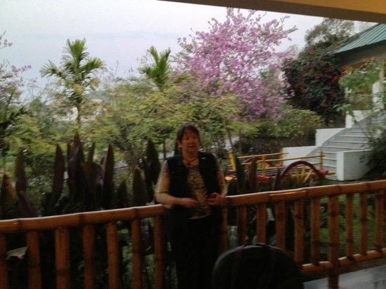 IORA - The Retreat,Kaziranga: View of Surroundings