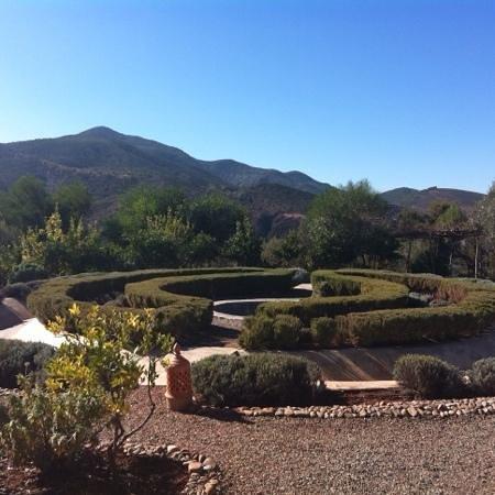 Kasbah Bab Ourika: Beautiful gardens.
