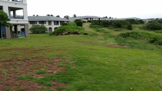 The Point at Poipu: back to ocean looking at resort