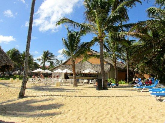 Caribe Club Princess Beach Resort & Spa: Beach bar