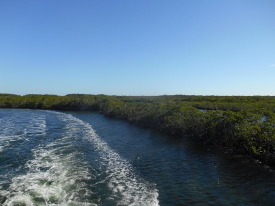John Pennekamp Coral Reef State Park : Headed out through the mangroves.