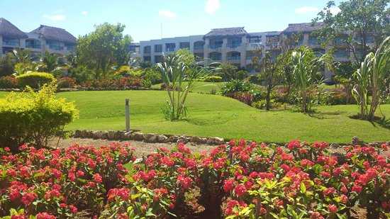 Hard Rock Hotel & Casino Punta Cana: Garden