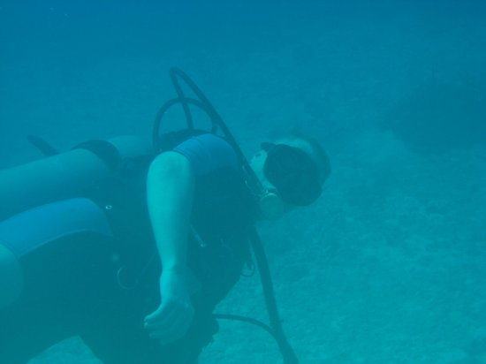 St. Thomas Diving Club: Sandstorm gaze from beginers, note the 2ndary Reg use!!!