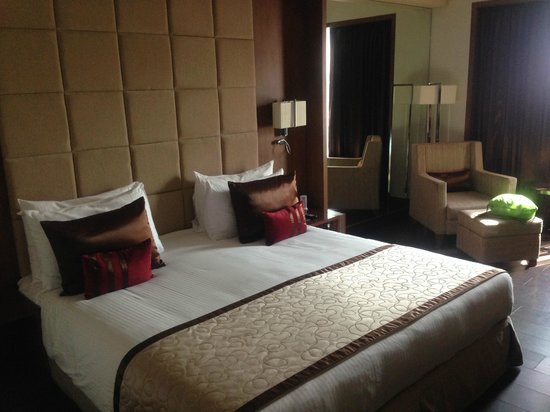Radisson Blu Agra Taj East Gate: My room