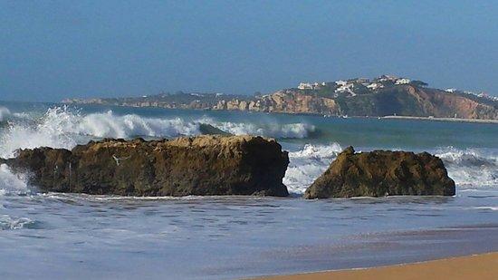 Auramar Beach Resort: View from beach near hotel