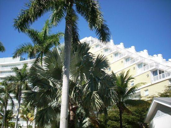 Grand Lucayan, Bahamas : hotel and palms