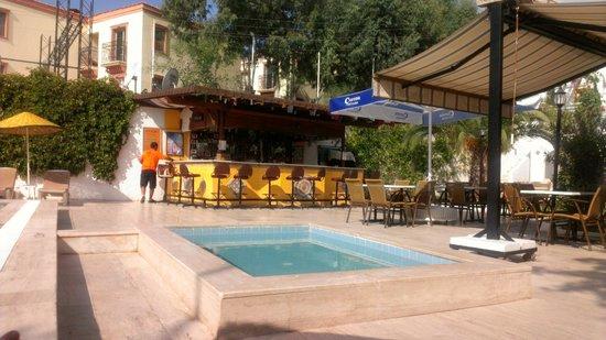 Paradise Apart Hotel: shaggys cocktail bar