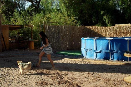 Casa Campestre: piscina