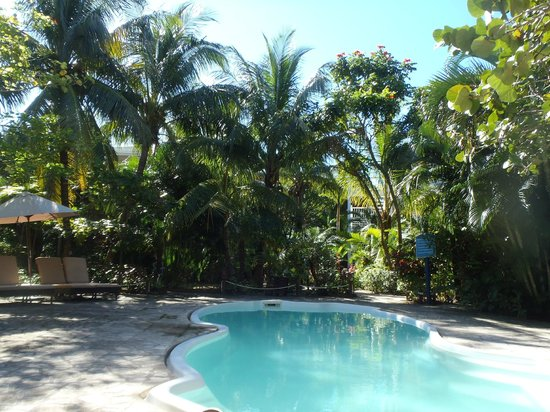 Paradise Beach Hotel: Pool by our rooms