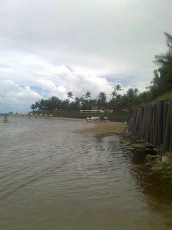 Praia De Maracaipe: PRAIA DE MURO ALTO,COM O GUIA EDY.
