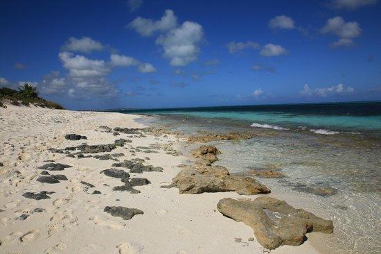 Gansevoort Turks + Caicos: Grace Bay