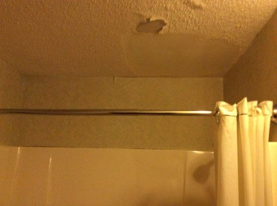 Motel 6 Richmond: Bathroom ceiling