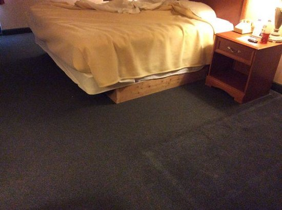 Motel 6 Richmond : Bed, frame, floor area